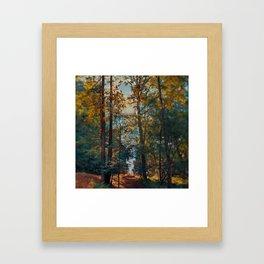 Creekside summer Framed Art Print