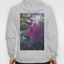 Pink Flower w/sunburst Hoody