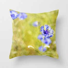 Bachelor Buttons Glowing Throw Pillow