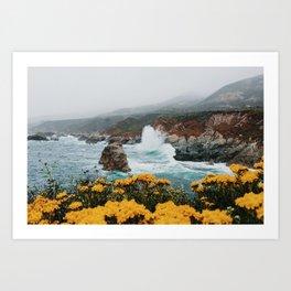 Big Sur - Micah Hamilton Art Print