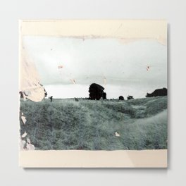 Avebury - The Field Metal Print