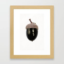 Black Acorn Framed Art Print