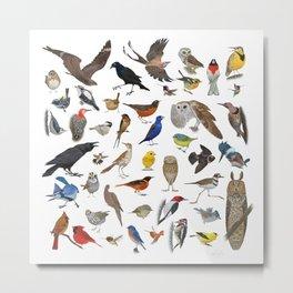 Bird Pattern Metal Print