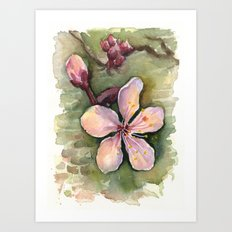 Cherry Blossom Watercolor Painting | Spring Flowers Art Print