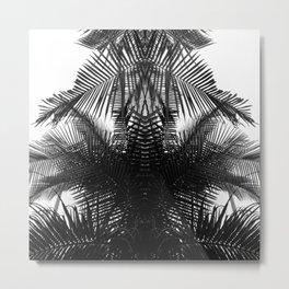 BW fern Metal Print