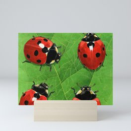 Happy Ladybirds Mini Art Print