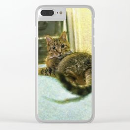 Toby Clear iPhone Case