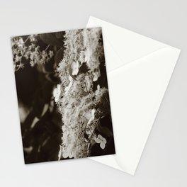 Climbing hydrangea Stationery Cards