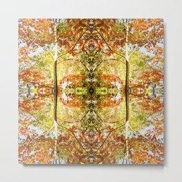 74 - Fall abstract Metal Print
