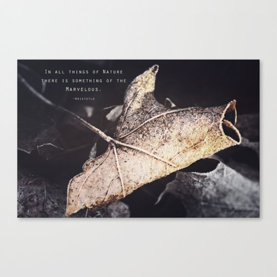 Something of the Marvelous Canvas Print