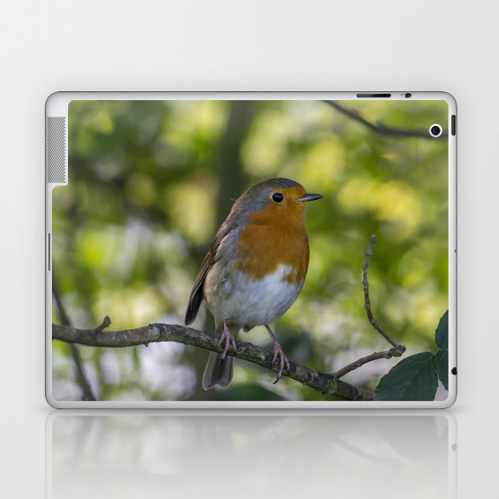 Robin Redbreast. Laptop & iPad Skin by angelaairdphotography (LSK7677595) photo
