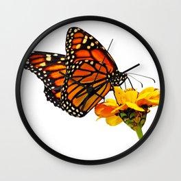 Monarch Butterfly on Zinnia Flower Wall Clock