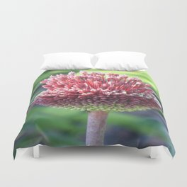 Close Up of An Ornamental Onion or Drumstick Allium Duvet Cover