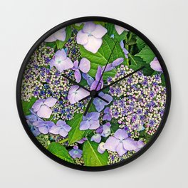 MAGIC LACECAP HYDRANGEA Wall Clock