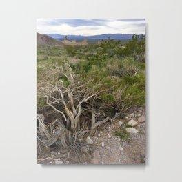 Rhyolite ghost town landscape Metal Print