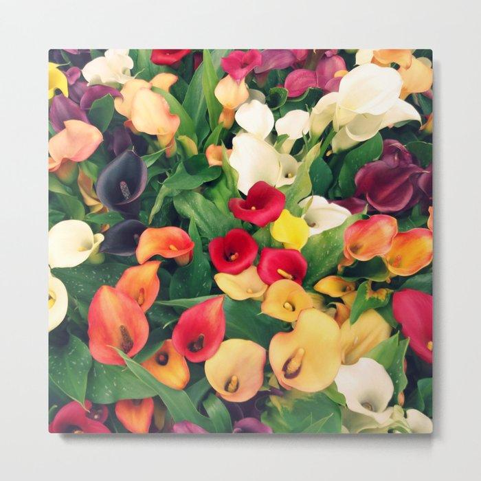 Rainbow Calla lily Metal Print