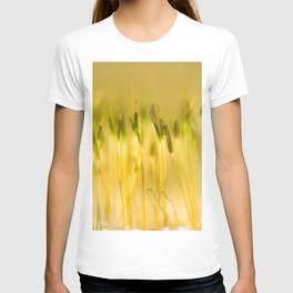 Colorful sprouts T-shirt