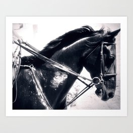 Blackjack Art Print