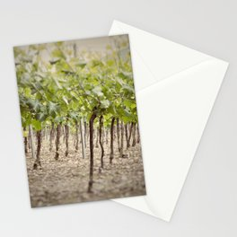 Vineyard Perspective Stationery Cards
