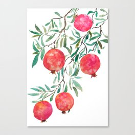 red pomegranate watercolor Canvas Print