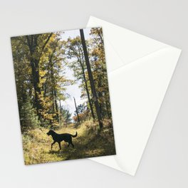 A Walk with Charlie Stationery Cards