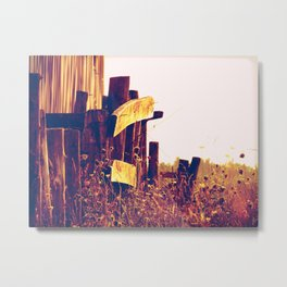 Country landscape Metal Print