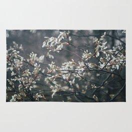 Wild Cherry Blossom Rug