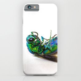 Colorful little fly iPhone Case