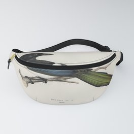 Eurasian magpie (PICA PICA) illustrated by the von Wright brothers Fanny Pack