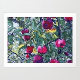 Apple Tree  Art Print