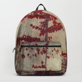 make the best of it Backpack