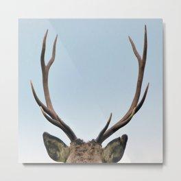 Stag antlers Metal Print