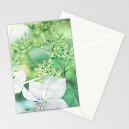 Pink Green Lace Cap Hydrangea Flower Stationery Cards