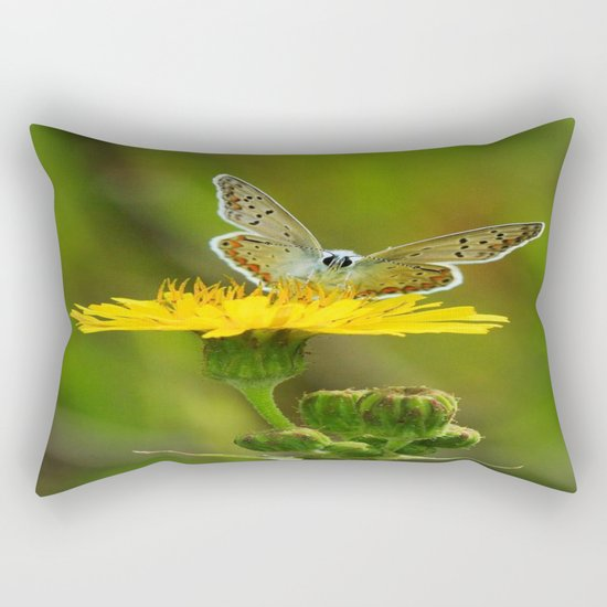 ART Rectangular Pillow