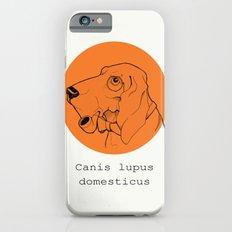 Canis iPhone 6s Slim Case