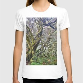 Laurisilva. Foggy mistery forest T-shirt