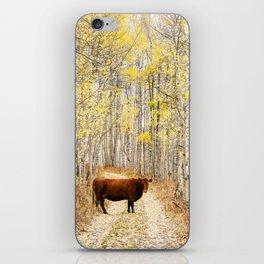 Cow in aspens iPhone Skin