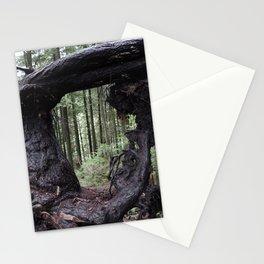Wood Frame Wonder Stationery Cards