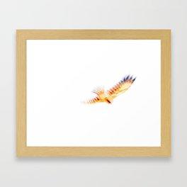 In Flight Kite - JUSTART (c) Framed Art Print