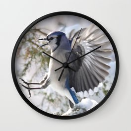 """Get Off My Branch!"" Blue Jay Wall Clock"