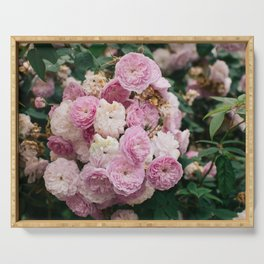 The smallest pink roses Serving Tray