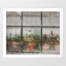 Greenhouse  Art Print