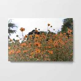 Flowers! Orange! Nature! Metal Print