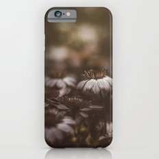 I was dizzy when we met Slim Case iPhone 6s