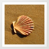 seashell Art Prints featuring Seashell by WonderfulDreamPicture