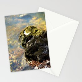Alone in Secret Hollow with the Caves, Cascades, and Critters, No. 9 of 20 Stationery Cards