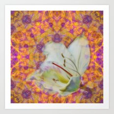 Bauhinia on vibrant kaleidoscope Art Print