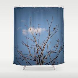 wintertree Shower Curtain