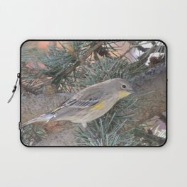 Audubon's Warbler on a Spruce Branch Laptop Sleeve