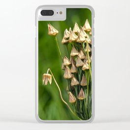 Seed Pods Clear iPhone Case
